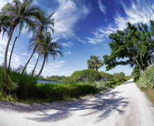 Historic Jungle Trail Vero Beach Florida
